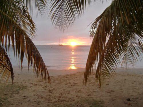 Martinique 2010-2011 026