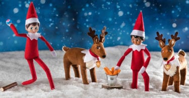 the-elf-shelf-elfe-concept-tradition-pere-noel-etats-unis-une