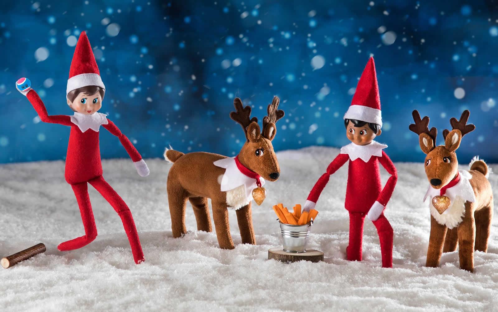 Les Traditions De Noel En Australie the elf on the shelf », adopter un elfe pour noël à atlanta