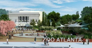 zoo-atlanta-visite-animaux-tour-attraction-featured