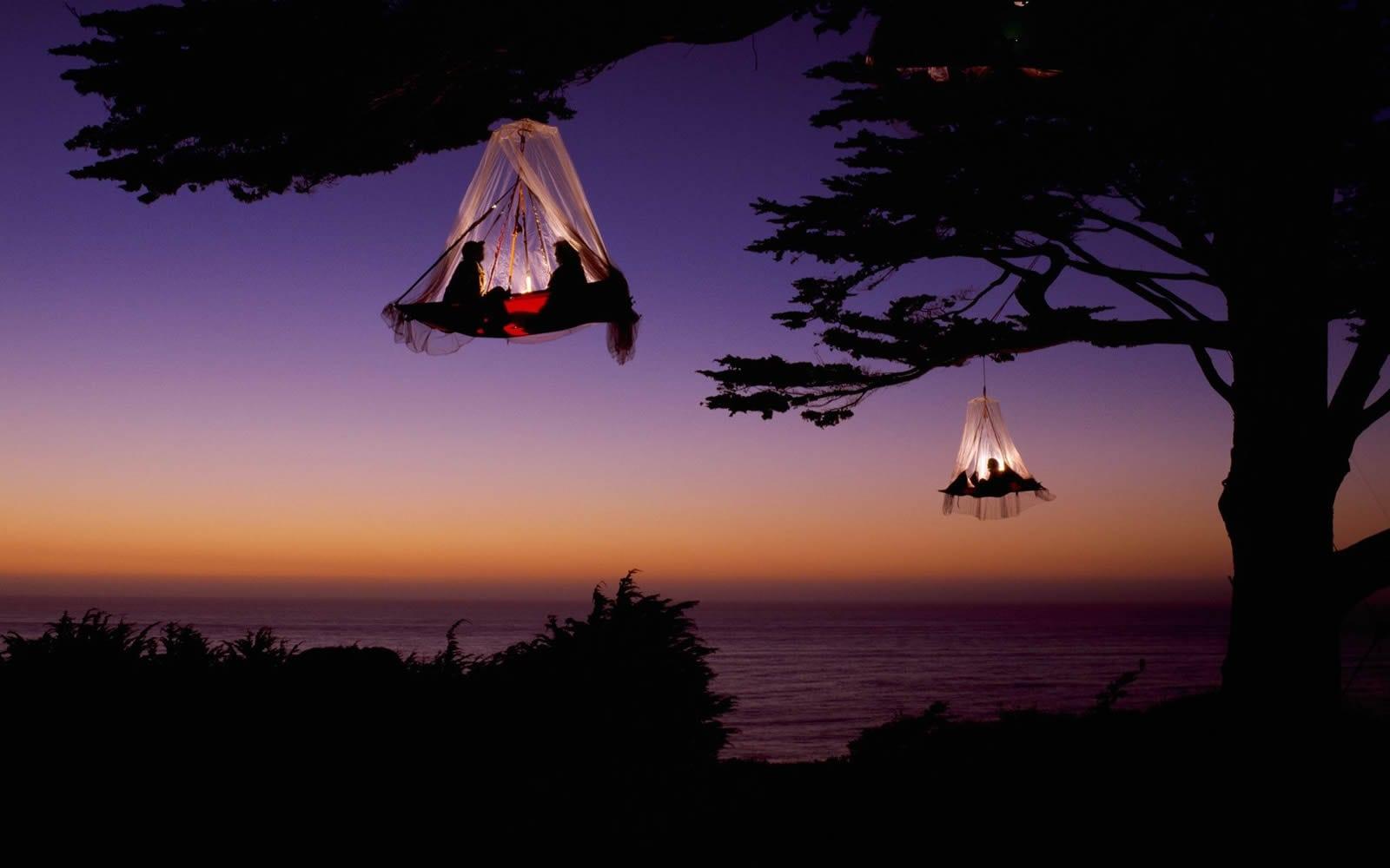 Le Tree camping, un dodo entre les arbres et les étoiles dans la forêt géorgienne
