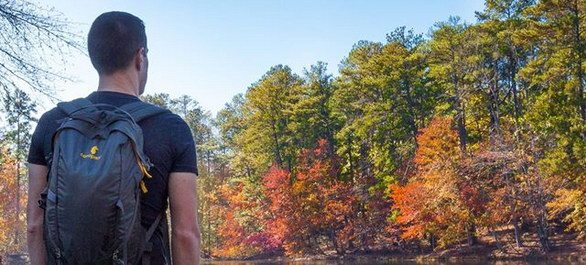 Cascade Springs Nature Preserve Trail à Atlanta