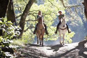 balade_foret_cheval_atlanta