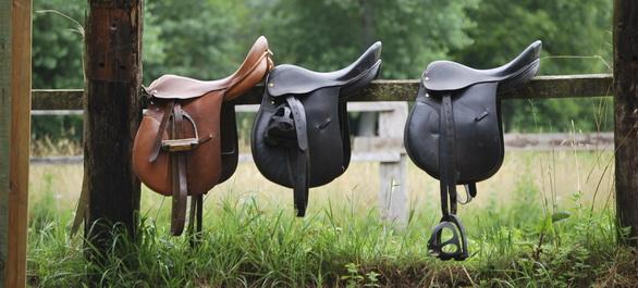 Faire du cheval à Atlanta - Club d'équitation