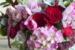 le-jardin-francais-fleuriste-decoration-atlanta-p-05-NOV-2014
