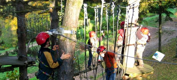 Parc d 39 accrobranches id e loisir atlanta treetop quest for Accrobranche salon