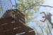 treetop-quest-accrobranche-atlanta-p-05