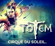 Laissez-vous enchanter par le magnifique spectacle TOTEM du Cirque du Soleil sur l'évolution de l'espèce humaine