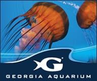 Plongée au Georgia Aquarium