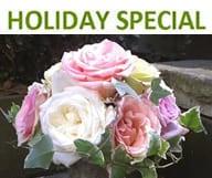 Offres spéciales pour les fêtes de fin d'année au Jardin Français