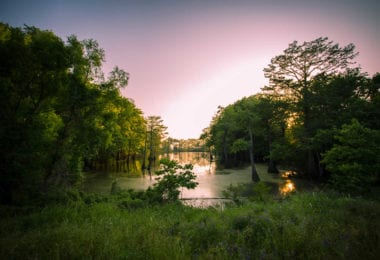 bayou-louisianne-mississippi-marecages-alligators-plantations-une