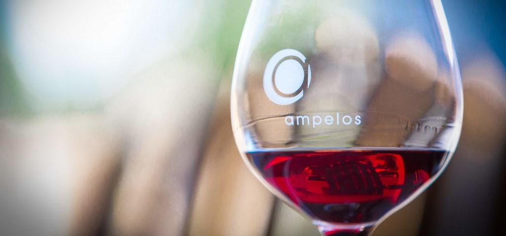 route-des-vins-biodynamiques-autour-san-francisco-californie-ampelos