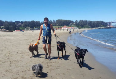 dog-sitters-san-francisco-une