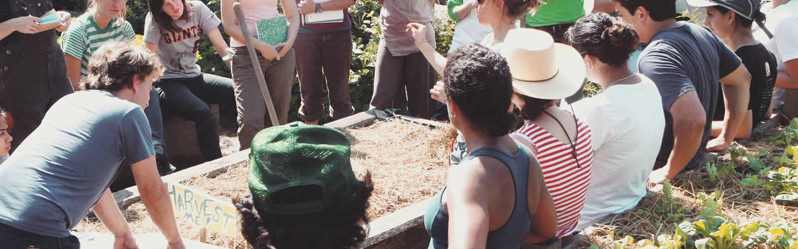 garden-for-environment-jardin-ecologie-san-francisco-une