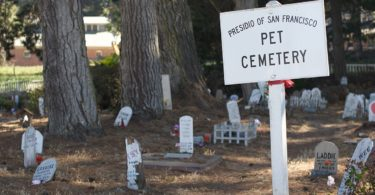 article-Pet_Cemetery_-San_Francisco