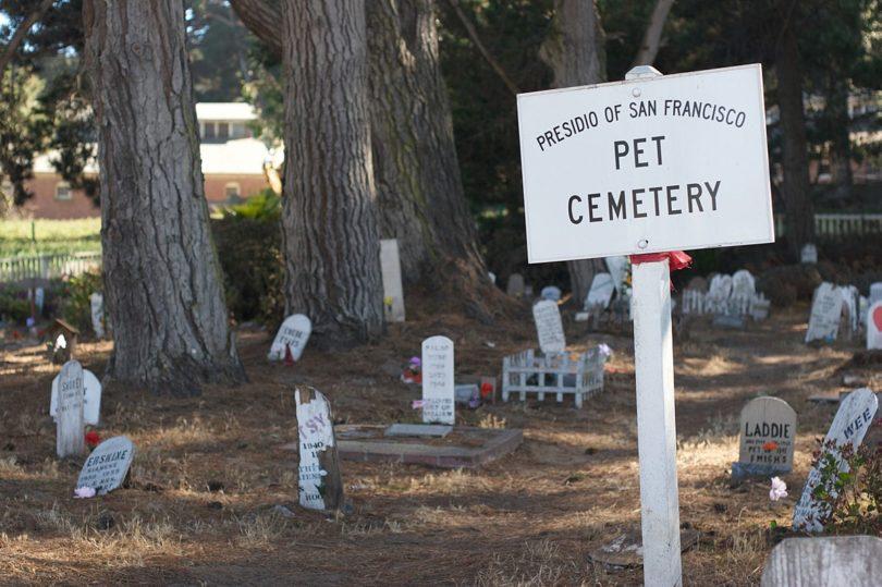 article-Pet_Cemetery_-San_Francisco