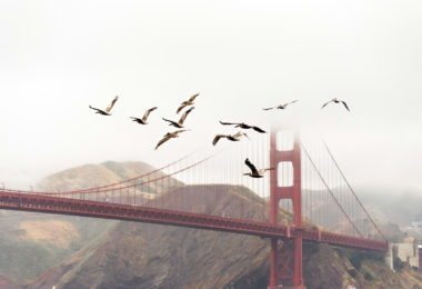 golden-gate-bridge-pont-monument-une