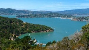 san-francisco-enfants-exploratorium-musees-parc-iles-aquarium-angel-island