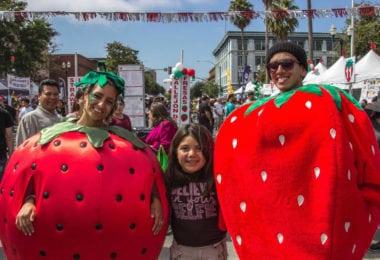 Ramenez votre fraise !