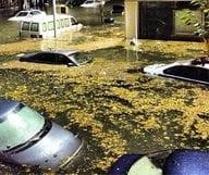 L'ouragan Sandy par ceux qui l'ont vécu