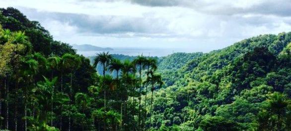 La Martinique, une île sublime