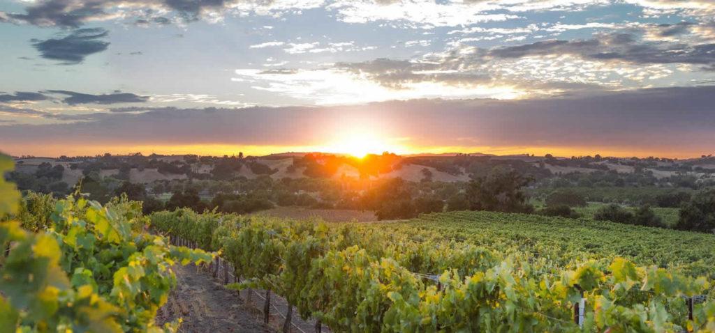 visiter-solvang-village-danois-scandinavie-californie-rideau-vineyard