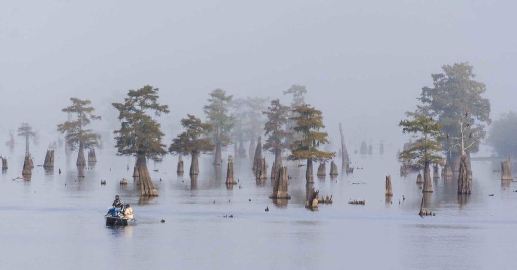 bayou-louisianne-mississippi-marecages-alligators-plantations-atchafalaya-basin