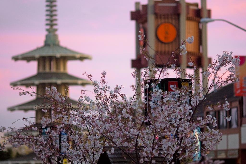 Une journée à Japantown