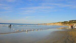 journee-jolla-quartier-san-diego-californie-sud-plage-station-balneaire-pacifique-03