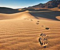 Un weekend dans la Death Valley