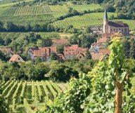 La Vallée du Rhône se met en bouteille