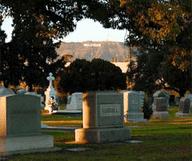 Une toile au milieu des tombes