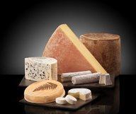 Monsieur Marcel tenait en son bec un fromage…
