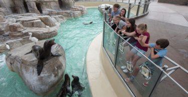 seaworld-san-diego-visite-parc-attractions-une
