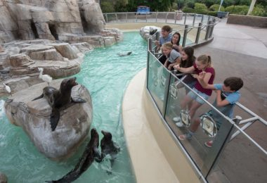 seaworld-san-diego-visite-parc-attractions-une
