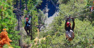 ziplines-at-pacific-crest-foret-rightwood-une