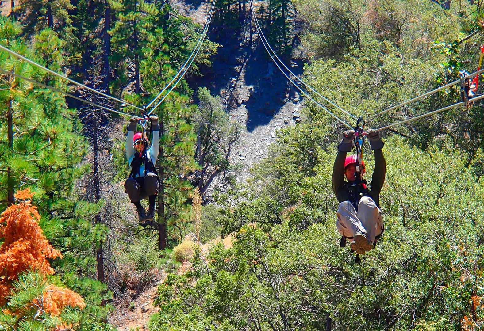 Prenez de la hauteur aux Ziplines at Pacific Crest