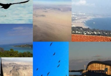sealand-travels-agence-voyage-particuliers-entreprises-une