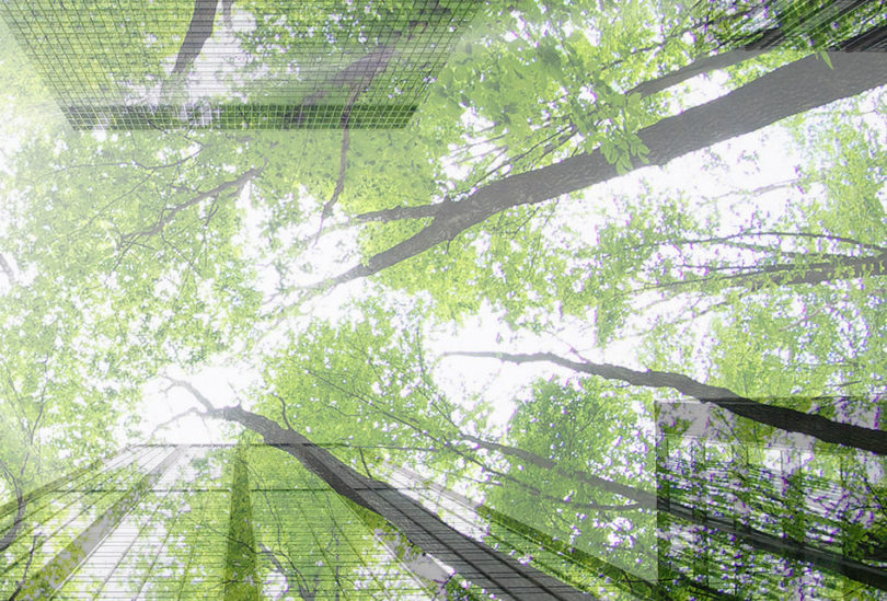 news-la-green-business-program2