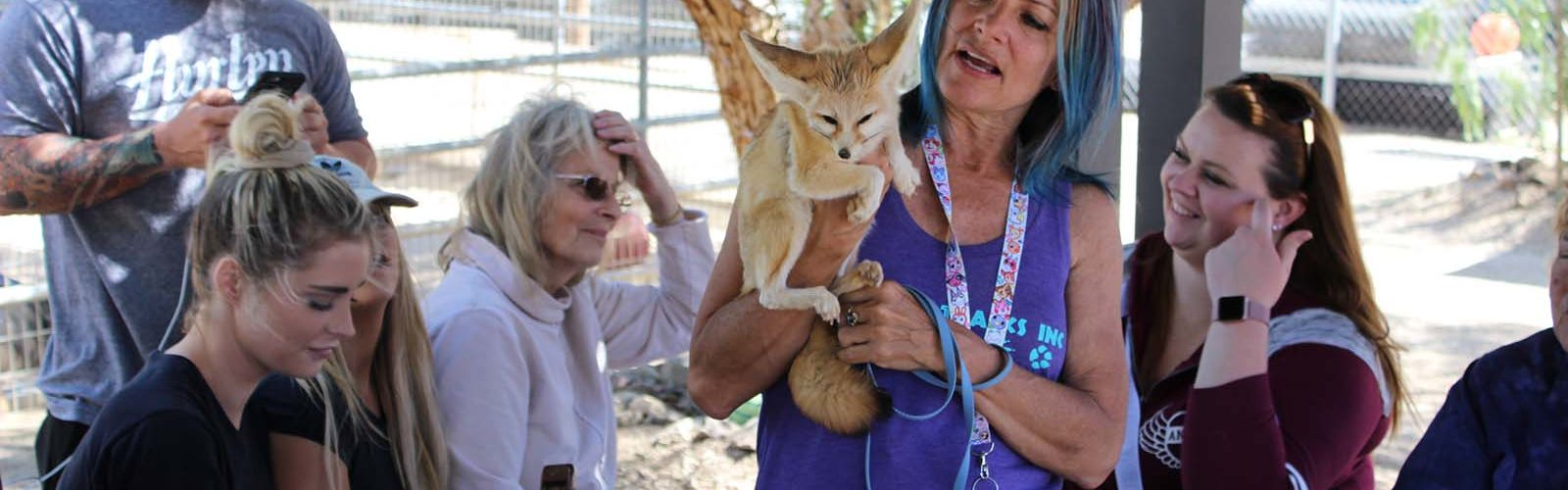 visiter-animal-tracks-inc-sanctuaire-animaux-sauvages-los-angeles-une
