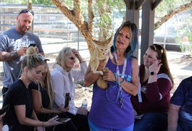 visiter-animal-tracks-inc-sanctuaire-animaux-sauvages-los-angeles-une