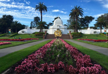 san-francisco-conservatory-of-flowers-jardin-musee-une