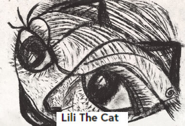 Lili The Cat
