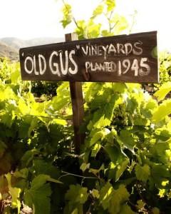 route-vins-vignobles-san-diego-californie-g-2686