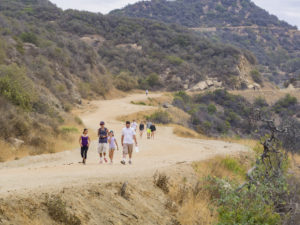 Hiking in Hollywood Hills trail