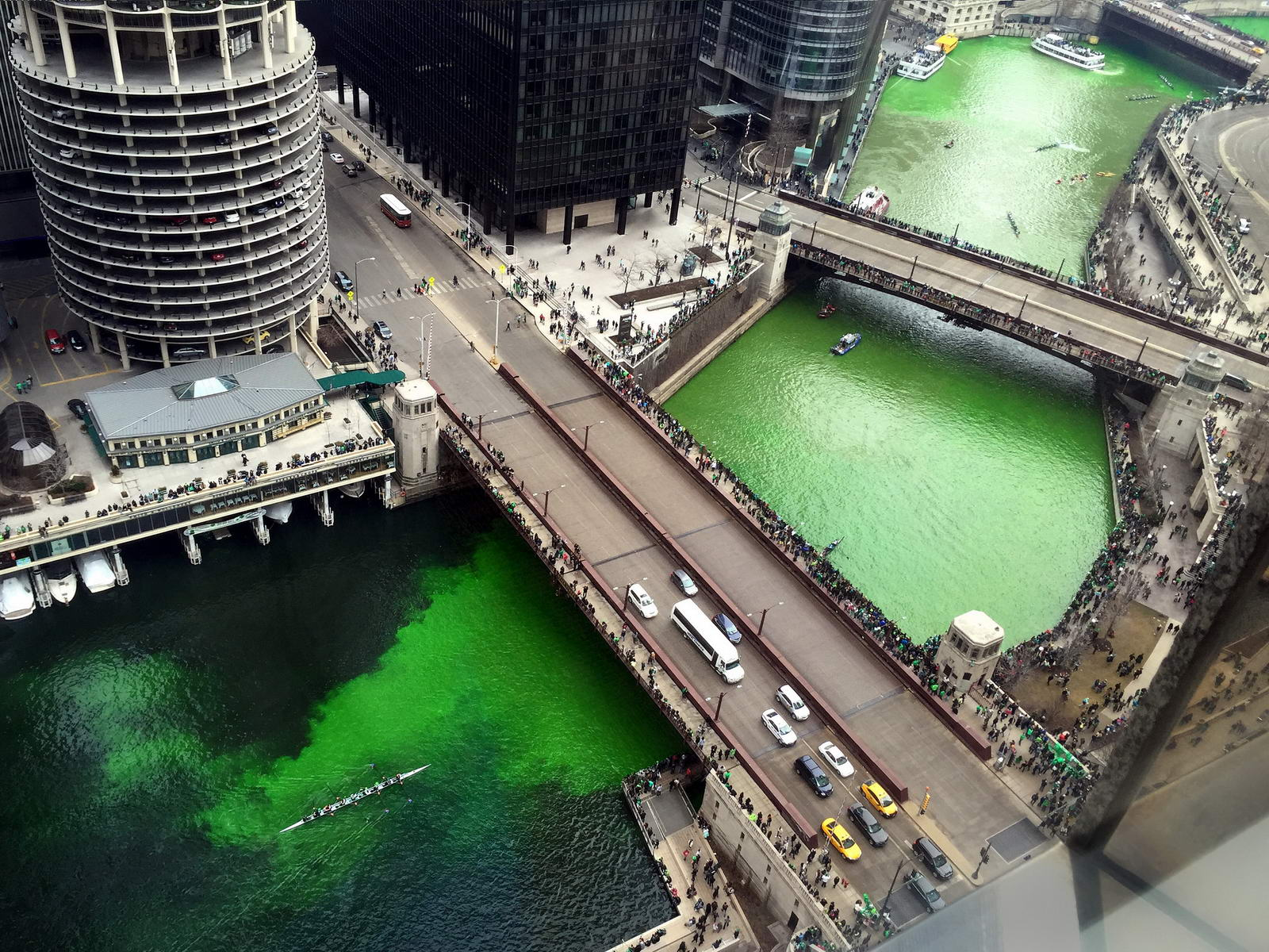 La Saint Patrick à Chicago