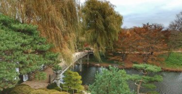chicago-botanic-garden-coeur-vert-ville-une