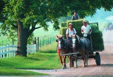 Un week-end chez la communauté des Amish