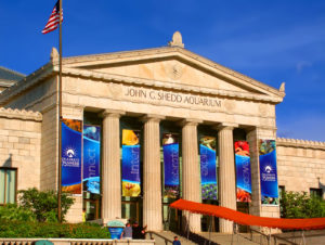Entree du Shedd Aquarium à Chicago — Photo par Wirepec