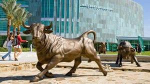 grandes-universites-publiques-fsu-uf-ucf-usf-floride-university-of-south-florida